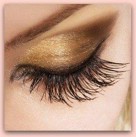 Best Eyeshadow